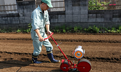 Seeder Tape Sowing Method